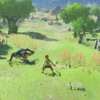 CI_NSwitch_ZeldaBreathOfTheWild_TheMasterTrials_Boko_02_mediaplayer_large
