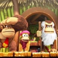 SWITCH Donkey Kong Country Freeze36742