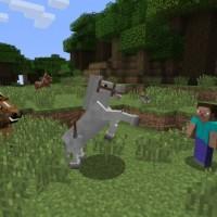 SWITCH Minecraft: Nintendo Switch Edition38511