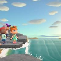 SWITCH Animal Crossing: New Horizons44978