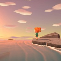 SWITCH Animal Crossing: New Horizons44981