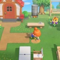 SWITCH Animal Crossing: New Horizons44984