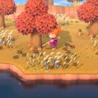 SWITCH Animal Crossing: New Horizons44985
