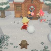 SWITCH Animal Crossing: New Horizons44986